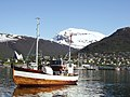 Tromso havn.jpg