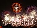 Tsuchiura Fireworks Competition 2009 a.jpg