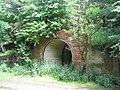 Tunnel mouth at former Nettleton Ironstone workings - geograph.org.uk - 855463.jpg