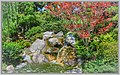 Turtle Falls (116960073).jpeg