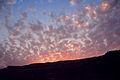 Tze'elim Canyon 16413 (11852314163).jpg