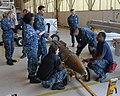 US Navy 120201-N-NL150-002 Aviation Ordnancemen 3rd Class Jasmine Banks, Rumiel Benson, Bryce Warde, Mallory Tapley and Daniel Messias, all assigne.jpg