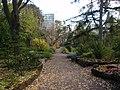 UT Botanical Garden1 2008.JPG