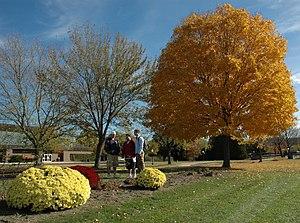 University of Wisconsin–Richland - UW–Richland campus