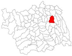Vị trí của Ungureni