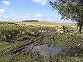 Upland scenery - geograph.org.uk - 356209.jpg