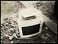 Upside down IBM G40 with leaves 20130104.jpg