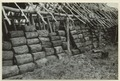 Utgrävningar i Teotihuacan (1932) - SMVK - 0307.g.0106.tif