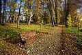 Väimela mõisa park 2013-10.jpg