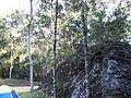 Vale Verde^ - panoramio.jpg