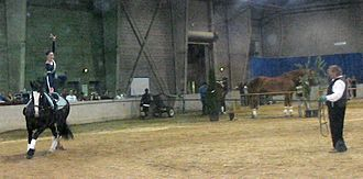 Longeing - A horse and vaulter on a longe line with handler on the ground. (In vaulting, the handler is called a longeur.)  The longe is also used to develop a person's equestrian skills.