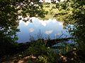 Verhuny, Poltavs'ka oblast, Ukraine, 37873 - panoramio (138).jpg