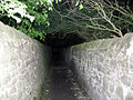 Victorian walled footpath - geograph.org.uk - 1298218.jpg