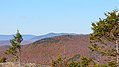 View from Bald Mountain, Franconia (494061) (11893445743).jpg