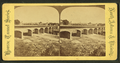 View of a bridge, from Robert N. Dennis collection of stereoscopic views.png