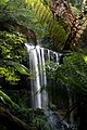 View of the Russell Falls through the green and lush Tasmanian forest. Mount Field National Park, Tasmania.jpg