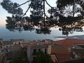 Views from the Castle of Castelmola Jan 2020 06.jpg
