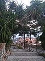 Views from the Castle of Castelmola Jan 2020 13.jpg