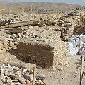 Visit Tel Arad 23.jpg