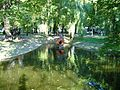W parku - panoramio (3).jpg