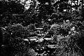 Water Garden Lowther Castle 1907.jpg