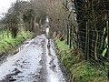 Waterlogged lane - geograph.org.uk - 336330.jpg