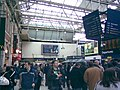 Waterloo Station concourse ^1 - geograph.org.uk - 1728304.jpg