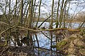 White Moss Loch - geograph.org.uk - 662392.jpg