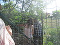 Wikitábor 2012 20120802 165208.JPG