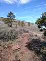 Wilson Mountain North Trail, Sedona, Arizona, Coconino County - panoramio (70).jpg