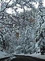 Wintery road through Oak Creek Canyon (3879588092).jpg