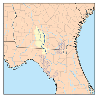 Withlacoochee River (Suwannee River tributary) River in the United States of America