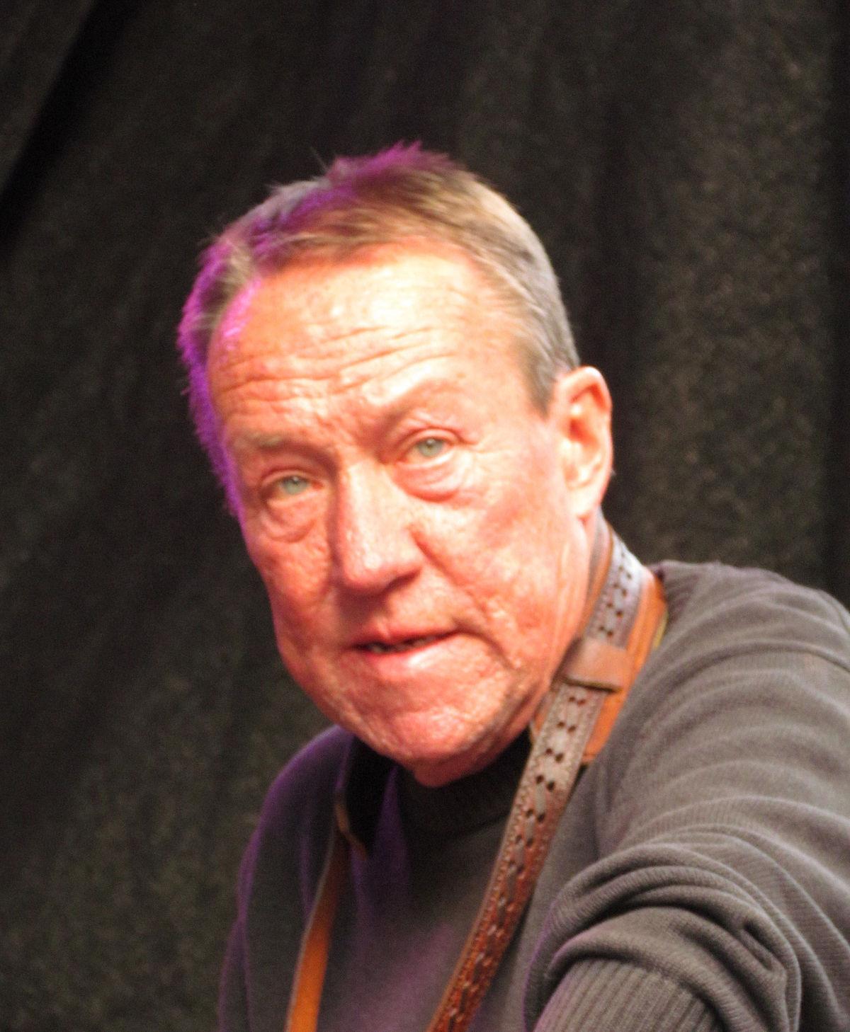 Wolfgang Engstfeld – Wikipedia