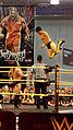 Wrestlemania XXX 2015-03-26 19-49-49 ILCE-6000 2154 DxO (17282900766).jpg
