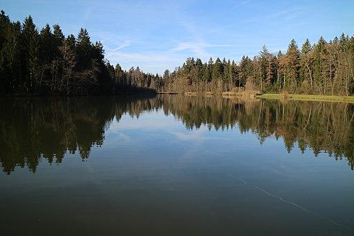 Wundschuher Teich 19