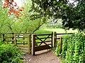 Wye Valley Walk at Dixton - geograph.org.uk - 1399921.jpg