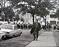 Yield to Pedestrians - Austin TX 1973.jpg
