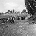 Zichron Jacob. Terrein van de Carmel Mizrachi Wineries. Met lorries over spoorra, Bestanddeelnr 255-4903.jpg