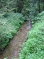 Zlatý potok v přírodní rezervaci Amálino údolí.jpg