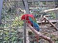 Zoo praha mg 006.jpg
