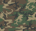 """""""M81"""" U.S. woodland camouflage pattern swatch.png"""