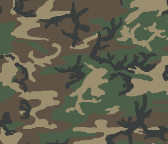 U.S. Woodland - Digital swatch woodland pattern.
