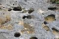 """Swiss cheese limestone"" (Pain Pond, San Salvador Island, Bahamas) 7 (16137262857).jpg"