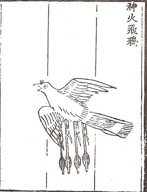Huolongjing - The 'divine flying fire crow' (shen huo fei ya), an aerodynamic winged rocket bomb from the Huolongjing