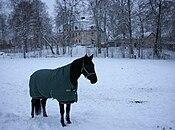 Ågesta gård 2009c.jpg