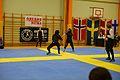 Örebro Open 2015 132.jpg