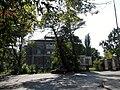 Łódź, ul. Tylna 9-11, park, 1881.jpg