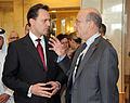 Συμμετοχή ΥΠΕΞ Δ. Δρούτσα σε συνάντηση Ομάδας Επαφής για τη Λιβύη - FM D. Droutsas participates in meeting of Contact Group on Libya (5616425768).jpg