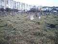 Єврейські поховання. М. Калуш.jpg
