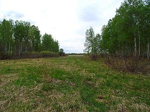 Bolsheukovsky District - Nature reserve in Bolsheukovsky District